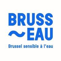 Brusseau